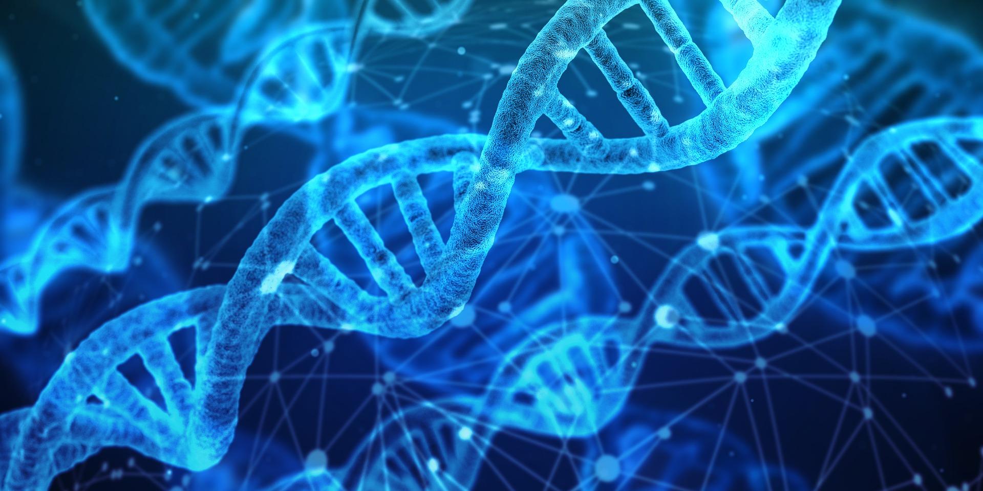 Pruebas genéticas: detectar y prevenir enfermedades a través del ADN