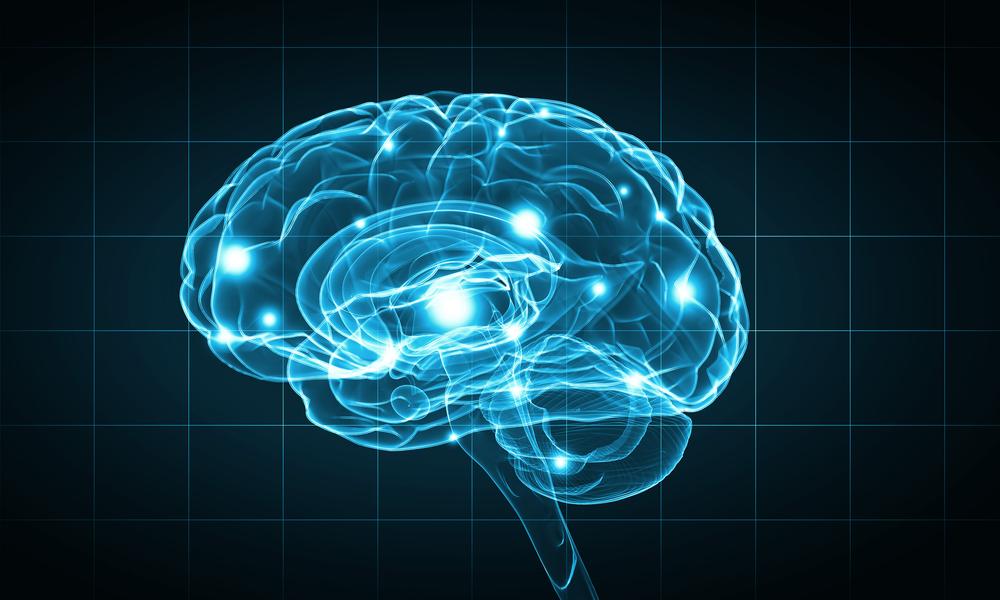 Epilepsia: síntomas, causas y tratamiento