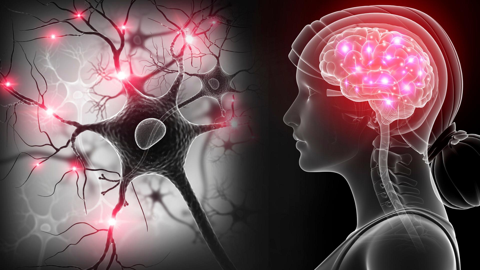 Esclerosis múltiple: síntomas y tratamiento