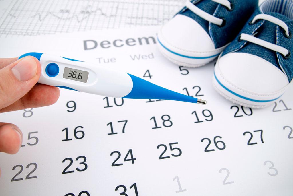 Cómo saber los días de mayor fertilidad