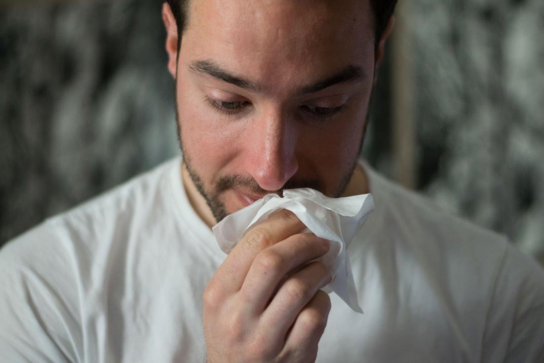 Cómo evitar las intoxicaciones alimentarias en verano