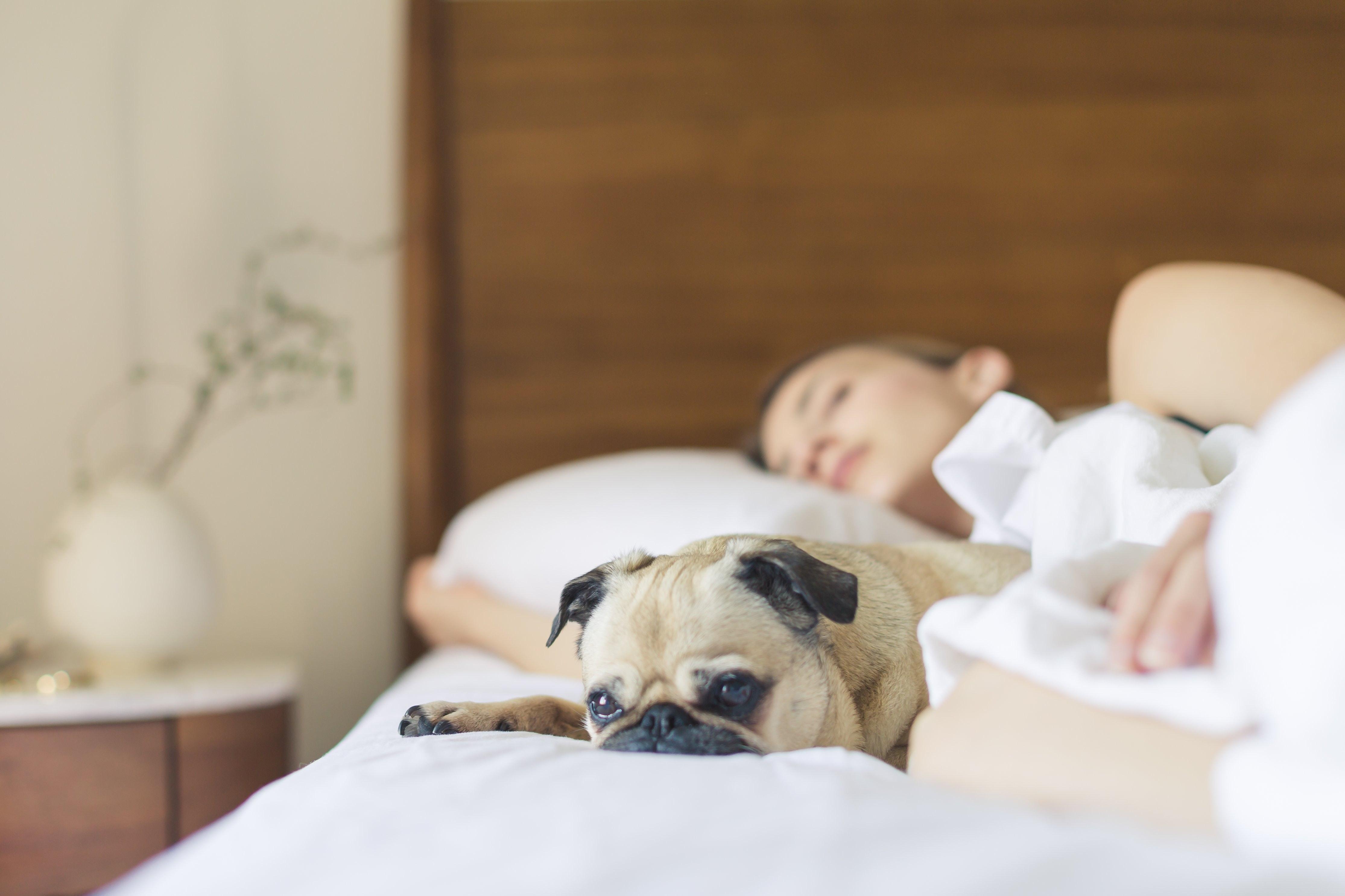 ¿Cuál es la posición para dormir más saludable?