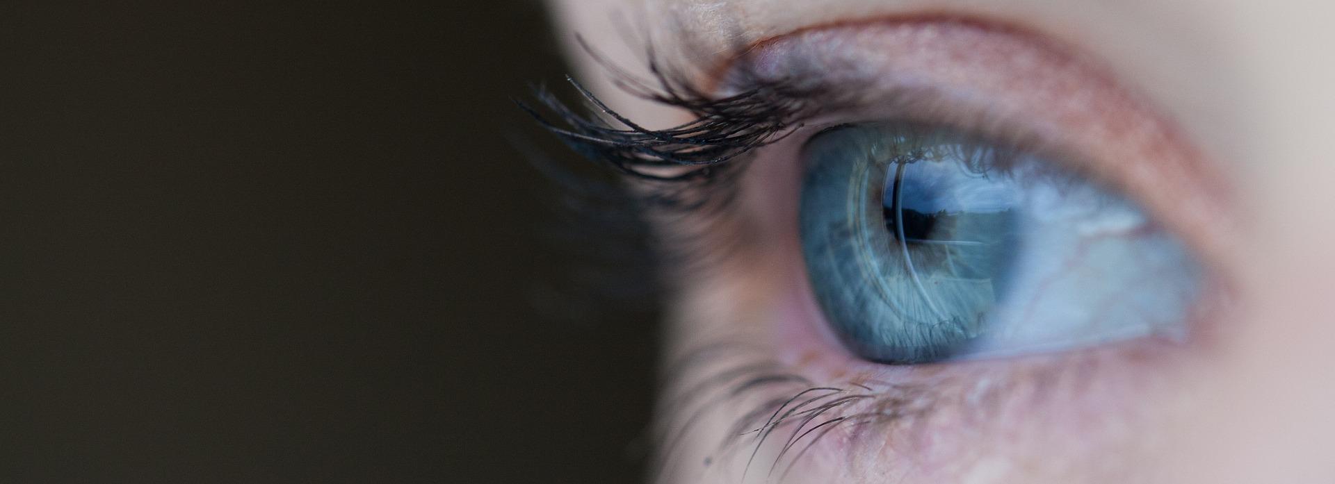 Ojo con la retinosis pigmentaria